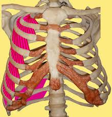 geïrriteerde longen