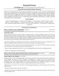 Insurance Adjusterme Claims Template Objective Examples Medical