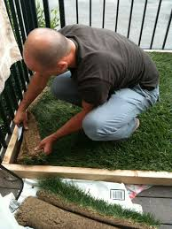 Diy Sod Super Dog Charlie Pants And Me Dog Potty For Patio Build Your Own