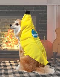 cat banana costume