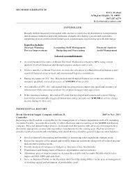 Plant Accountant Sample Resume