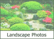 Small Picture Garden Design Garden Design with photoshop landscape design