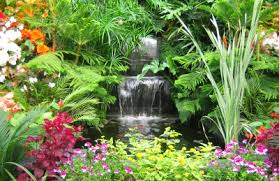 Small Picture Even if you live in an area with cold winters a tropical garden