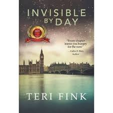 Invisible By Day - 2nd Edition By Teri Fink (Paperback) : Target
