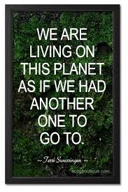 Recycling Quotes Stunning This Quote Says It Exactly How Some Of Us Live Our Life Not Caring