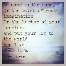 40 Oliver Quotes QuotePrism Simple Mary Oliver Love Quotes