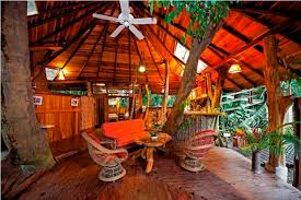 Tree House Hotel Eco Hotel Guide  Heart Of A VagabondTreehouse Accommodation