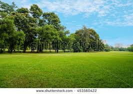 Green Grass Field Big City Park Stock Photo Royalty Free 453560422