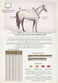 Horseware Sportz Vibe Horse Blanket