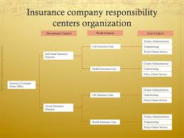 Insurance Company Chart Of Accounts Accounting In Insurance Companies Basic Concepts