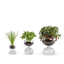 Mini <b>Convenient House</b> Plants Flowers <b>Automatic Watering</b> Devices ...