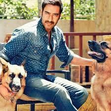 ajay devgan with his pet dogs koko and koki