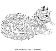 cat coloring book page ethnic decorative doodle cat isolated on white