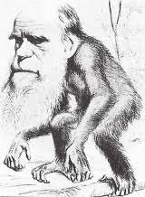 「ダーウィン」の画像検索結果