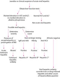 Overview Of Acute Viral Hepatitis Hepatic And Biliary