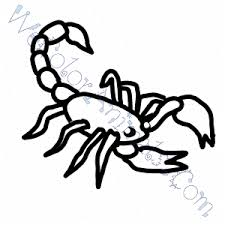 Small Picture Scorpion Coloring Pages