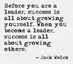 Best Leadership Quotes Enchanting 48 Best Leadership Quotes Best Quotes