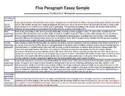 essay 1984 essay