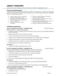 Claim Adjuster Resumes Insurance Claims Resume Entry Level Sample