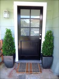 great front door with frosted glass panel marvellous exterior marvelous cococozy black stripe sidelight stained porch security installation light insert