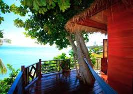 Photo0jpg  Picture Of Mae Haad Tree House Bar Ko Pha Ngan Treehouse Koh Phangan