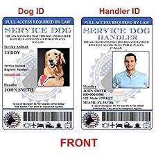 Photo Id Template Free Download Service Dog Id Card Template Identification Beautiful Amazon