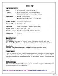 resume with profile statement prepossessing resume profile statement example about examples of