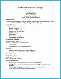 Best Buy Resume Examples Best Buy Resume Paper Luxury Resumes The Most Best Paper To