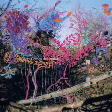 Animal Photo Albums Albums Of The Decade Animal Collective Here Comes The