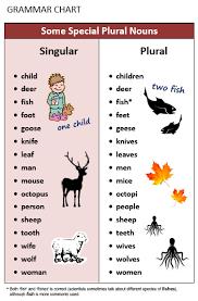 Plural Nouns Chart Plural Singular Nouns All Things Grammar