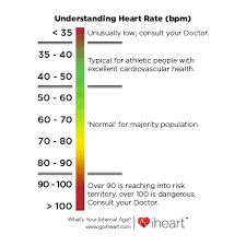 What Is A Normal Resting Heart Rate Adam Sharp Medium