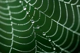 Spider Web Pattern Interesting The Static Spider Web Pattern Simple Thread