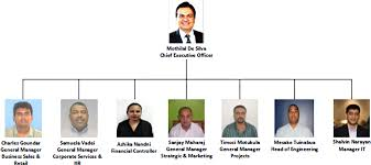 Corporate Structure Telecom Fiji Limited