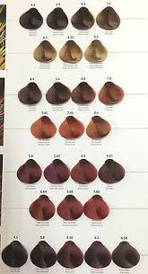 Maxima Hair Colours By Vital Hair Professional Use 100ml
