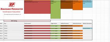 diet excel sheet renaissance diet auto templates juggernaut
