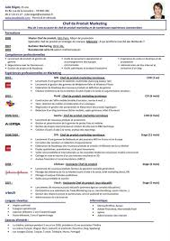 cv template word francais 13 chef cv template word cio resumed