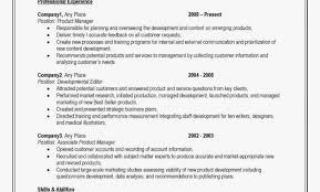 Professional Resume Writing Free Online Beautiful Professional Cv