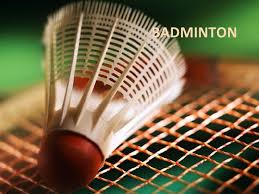 badminton game information