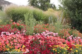 annuals idaho botanical garden