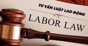 luật lao động quan trọng