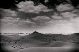 essay desertification essay
