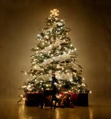 christmas tree lighting ideas. White Lights Christmas Tree Lighting Ideas H
