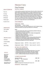 How To Write A Basic Resume For A Job Best Dog Groomer Resume Pets Salon Job Description Example Sample