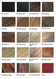 Hair Extension Color Chart Hair Color In 2019 Ash Brown Hair Color Beige Blonde Hair