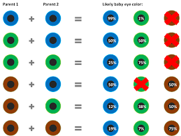What Will Be The Color Of The Eyes Of Your Newborn Baby