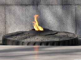 Image result for fire unknown soldier