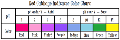 Red Cabbage Juice Indicator Chart Red Cabbage Juice Indicator Color Chart Www