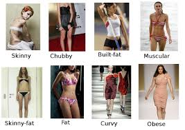 Female Body Types Chart Females Of The Vesy What Body Type Is Yours Closest To