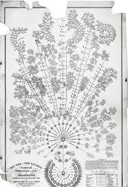 Origin Of The Org Chart Joe Kolinger