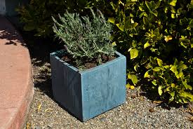 planters large concrete planter bo diy concrete planters martha stewart black rectangle with trees in